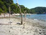 Mljet, spiaggia di Saplunara